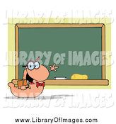 Clip Art of a Student Bookworm Presenting a Class Room Chalk Board by Hit Toon
