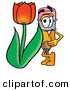 Clip Art of a Happy Yellow Pencil Mascot Cartoon Character with a Red Tulip Flower in the Spring by Toons4Biz